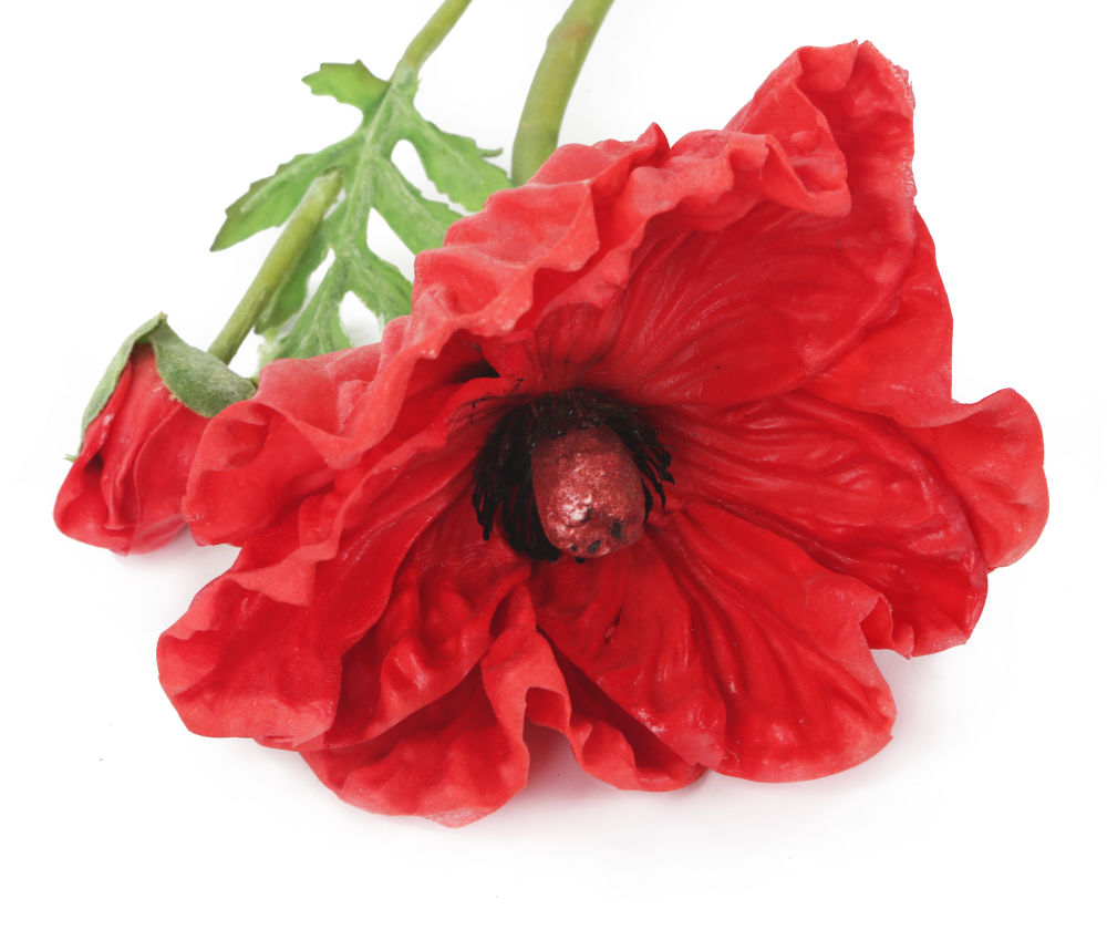 Artificial 74cm Single Stem Real Touch Red Poppy Artplants